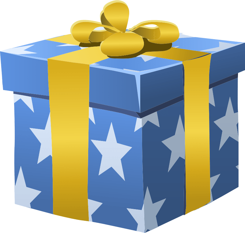 misc-bag-gift-box-wrapped